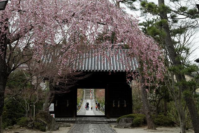 Entrada al pasillo del templo de Ronno ji