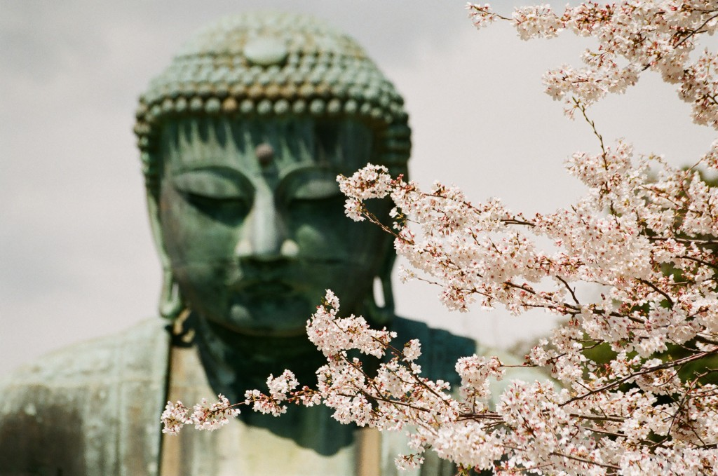 Imagen de la estatua del gran buda de kamakura