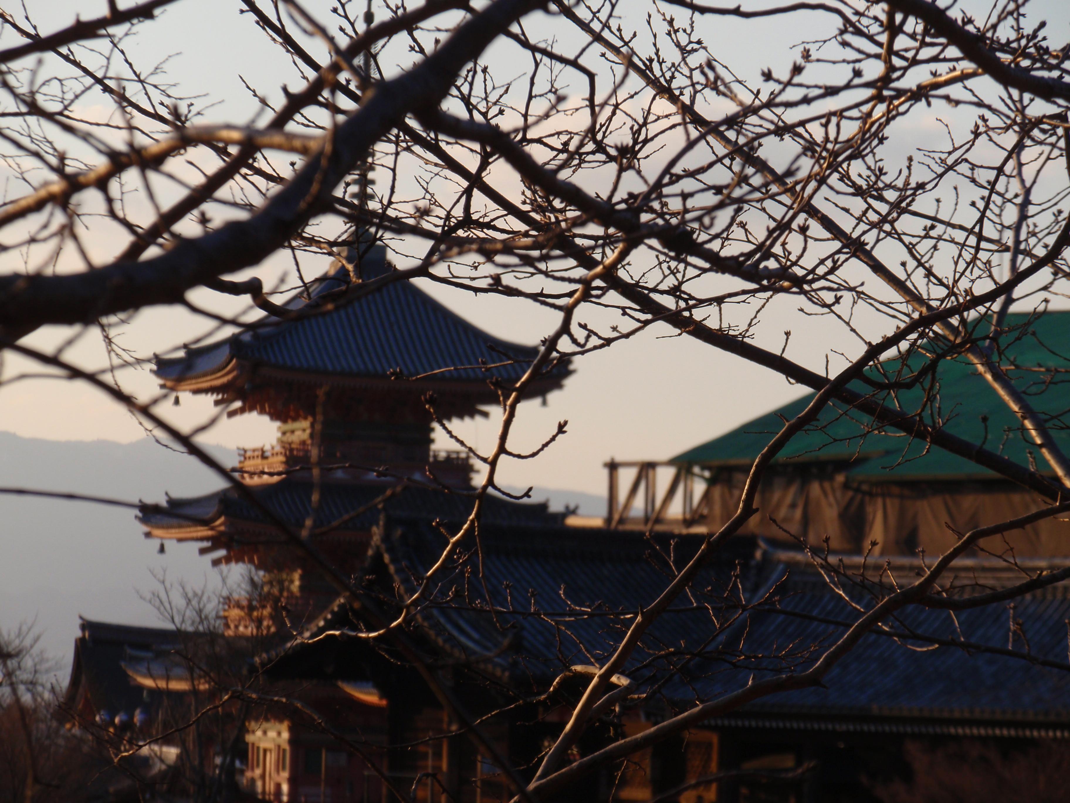 Circuito Japon : Circuito clásico japón días viajes